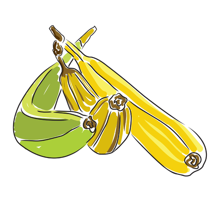 Bananas bunch illustration