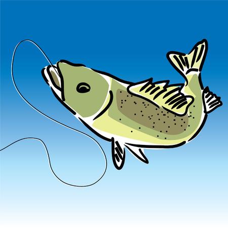 walleye fish on a fishing line