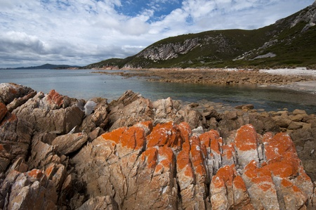 Landscape. Rocky Cape National Park, Tasmania, Australia Stock Photo