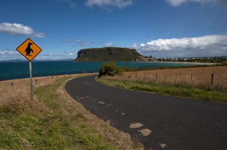 tasmania: Road to Stanley, Tasmania (Australia) with a Penguin Sign Stock Photo
