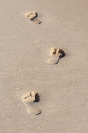 footmark: Footprints in Wet Beach Sand