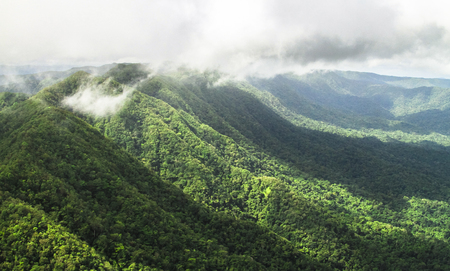 Pristine primary forest dominates the landscape in this aerial shot of the Cockscomb Basin, Belize.