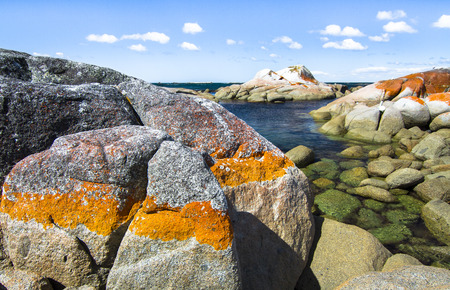 Bright orange lichen covers the rocks just above the high-tide line and gives the Bay of Fires its name. Tasmania, Australia.