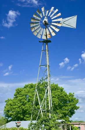 utilitarian: An old windmill with vines growing up the base taken against a bright blue sky.