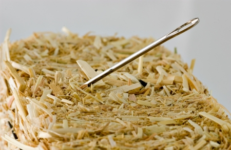 났습니다: Needle in a haystack, finding or loosing things. 스톡 사진