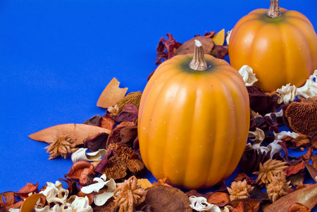 Two pumpkins surrounded by dried leaves and flowers on a blue background.  Stock Photo