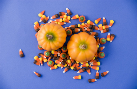 arranged: Two little pumpkins surrounded by colorful candy.