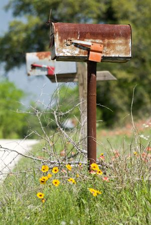 An old rusty mail box with little wild flowers growing around the base.