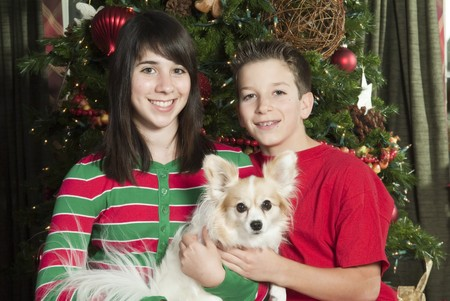 Two smiling children in front of a Christmas tree holding their little pet dog.