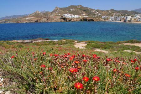 naxos: Naxos Island, Greece