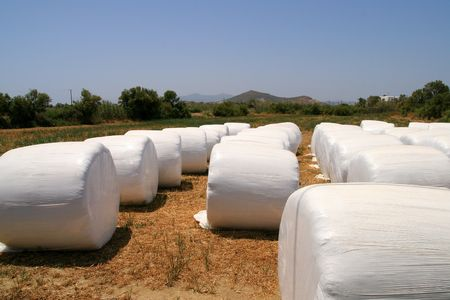 agronomic: Hay on field, Naxos, Greece Stock Photo