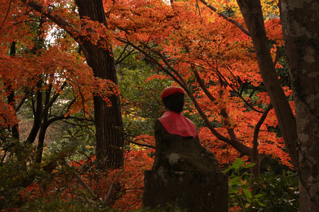 jizo: Autumn leaves and a jizo