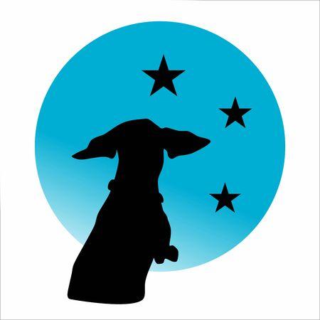 Dachshund black silhouette watching night sky with stars Çizim