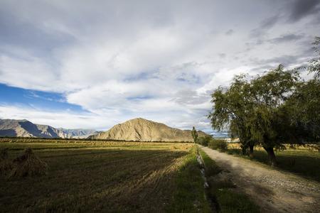 plateau: The Tibetan plateau, Lhasa suburb