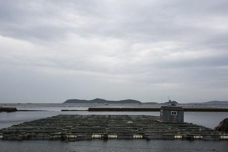 fish farming: aquaculture, fish farming