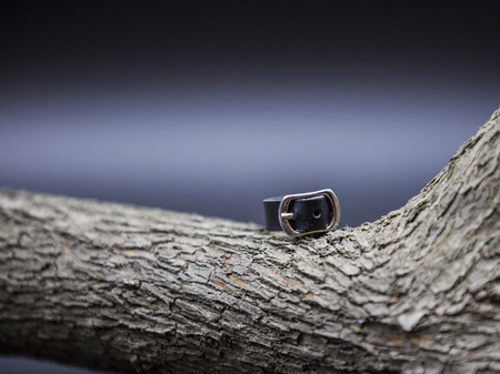 Cortical Ring