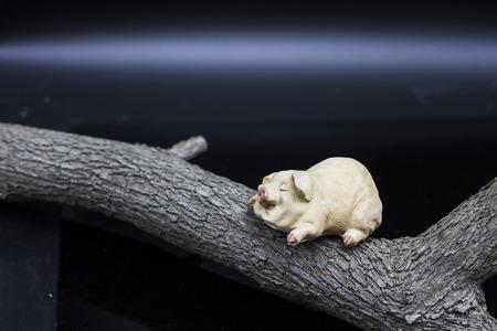 Sleepy pig Porcelain figure