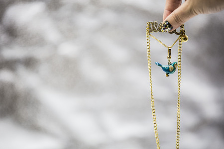 orioles: Craft bird necklace