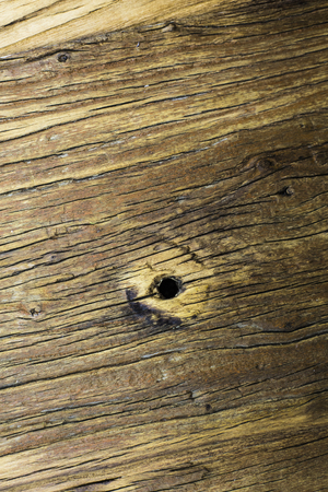 solid: Solid wood planks texture