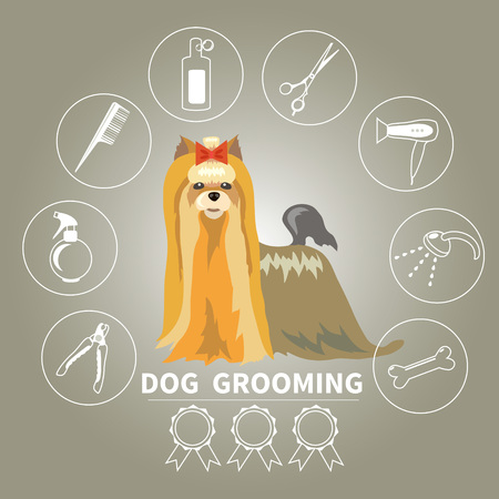 set of characters in a flat style.  The main tools which are used in the beauty salon for animals. Dog grooming icons set. Illustration