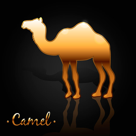 humped: Vector illustration in a flat style. one-humped golden camel