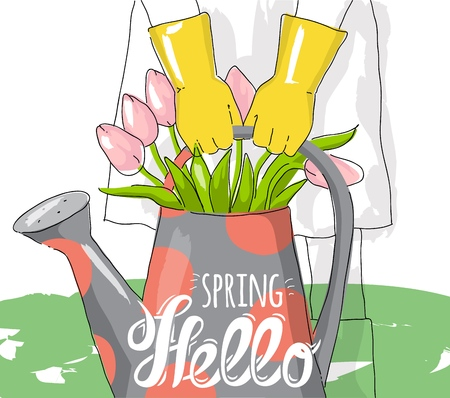 Bouquet pink tulips in watering can. Hello spring greeting card.