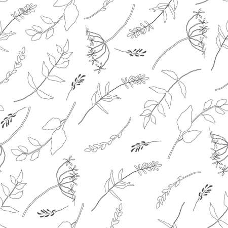 Vector seamless pattern with wild flowers, herbs and grasses