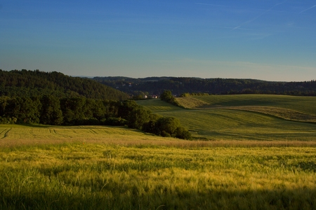bucolic: Bucolic landscape wiew on the meadows, pastures and fields in the hilly countryside in the Czech Republic. Yellow, green and blue summer picture. Stock Photo