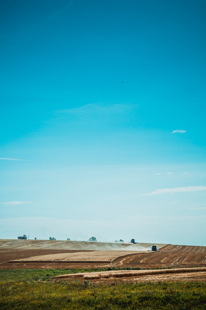 summer tree: combine harvester on a wheat field with  blue sky view from far