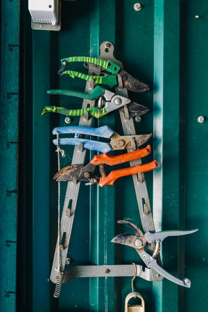 rack arrangement: Close-up of colorful rusty pliers hanging on metal rack against of green wall in garage Stock Photo