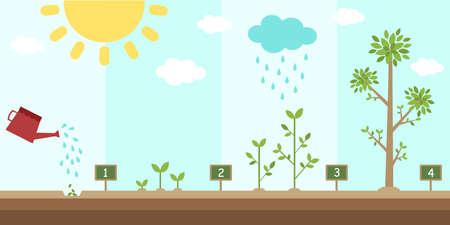 flat background of planting tree process Vettoriali