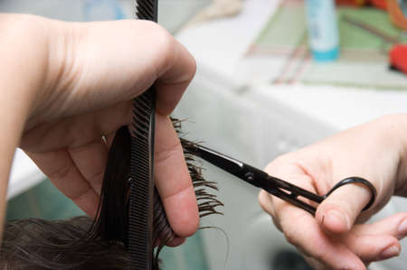 hair stylist: Hair cutting: hair stylist at work with scissors  Stock Photo