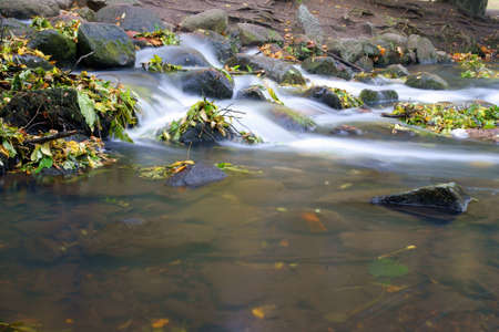 autumn, leafs in water fall of a creek  photo