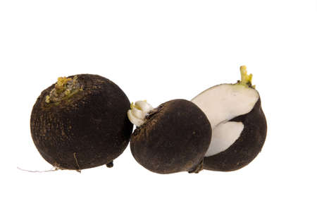 Black Radish, turnip isolated on white   Stock Photo
