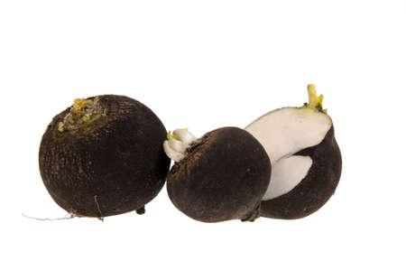 Black Radish, turnip isolated on white   Stock Photo