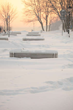 park bench winter white snow photo