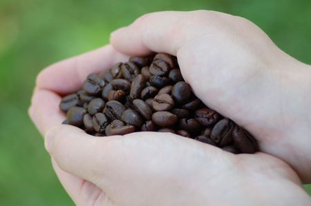 Roasted coffee beans in a womans hand on green natural background