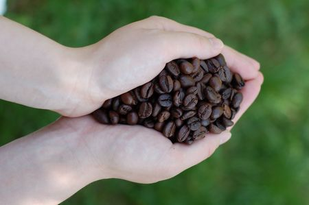 Roasted coffee beans in a womans hand on green natural background photo