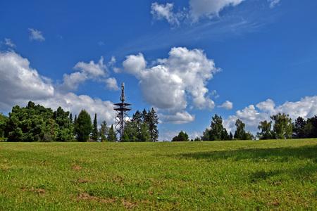 arboles frondosos: paisaje de verano con la hierba verde, azul cielo nublado, árboles frondosos
