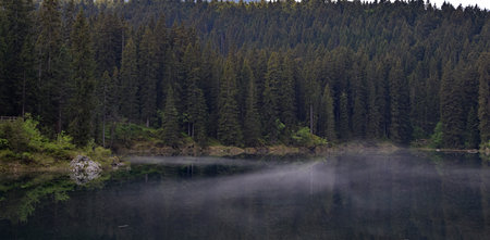 Foggy morning at Lake Carezza, clear water, pine forest Stock Photo