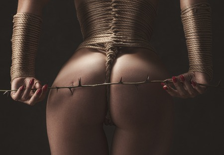 Ass close up and hands tied with barbed bondage branch  photo