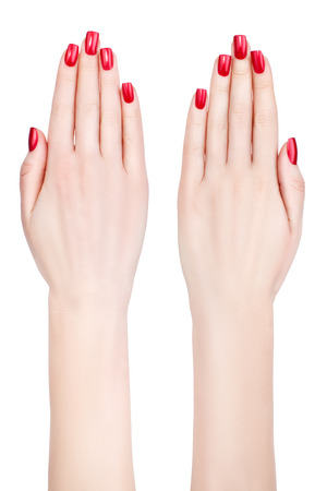 Beautiful female hands with french manicure on nails  Ladies Long fingers
