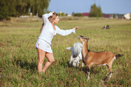 Woman is stroking a domestic goat, they are in a field on a farm. Stock Photo