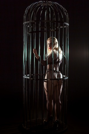 The woman inside is in a cage, she is wearing erotic lingerie mesh. Sex games of humiliation and submission. Stock Photo