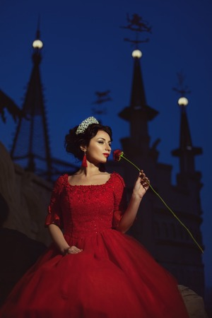 Princess is bored at night, in her hand a flower, a romantic story, against the background of the castle.