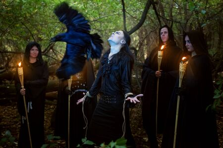 Sorcerers in black cloaks conduct a magical ritual over a man. A black raven is circling above them.