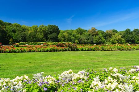 Big green park with colorful flowers Stock Photo