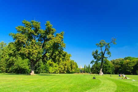 green park with blue sky Stock Photo - 7331600