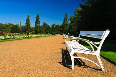 white bench in the sunny park photo