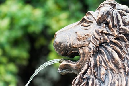 lion head fountain with flowing water